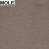 Mole_02
